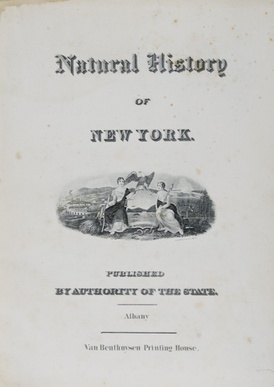 Natural History of New York; Geological Survey of New York: Paleontology- Volume IV, Part I. James Hall.