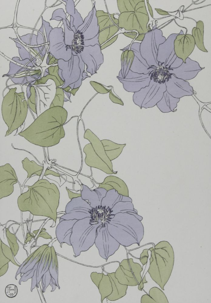 Decorative Flower Studies for the Use of Artists, Designers, Students, and Others. J. Foord.