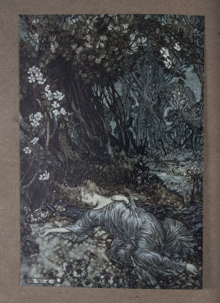 Le Songe d'Une Nuit d'Été. William Shakespeare, Arthur Rackham.