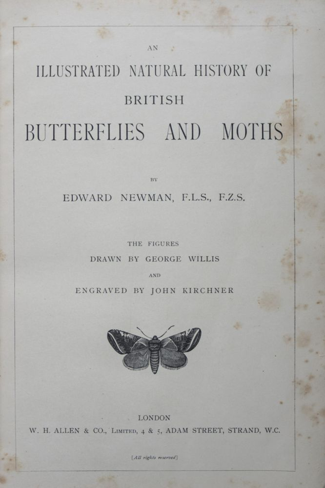 An Illustrated Natural History of British Butterflies and Moths. Edward Newman.