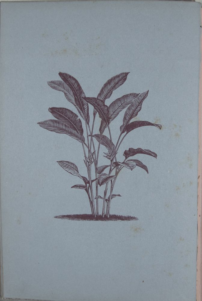 Decorative Painting: A practical Handbook on Painting and Etching Upon Various Objects and Materials for the Decoration of our Homes. B. C. Saward.