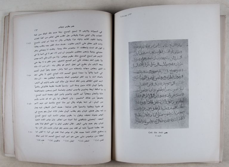 Acta Mythologica Apostolorum. Transcribed from an Arabic MS in the Convent of Deyr-Es-Suriani, Egypt, and from MSS in the Convent of St. Catherine, on Mount Sinai. (Horae Semiticae No. III). Agnes Smith Lewis.