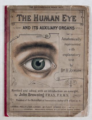 The Human Eye and Its Auxiliary Organs
