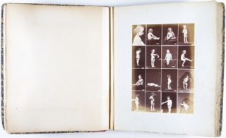 Album of 35 photographic prints with 570 images: nude studies of children, women and men.