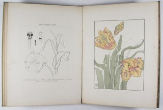 Decorative Flower Studies for the Use of Artists, Designers, Students, and Others