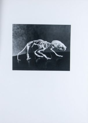 Atlas of the Skeletal Development of the Rat (Long-Evans Strain X-Ray Photographs) Normal and...