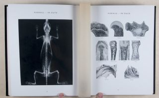 Atlas of the Skeletal Development of the Rat (Long-Evans Strain X-Ray Photographs) Normal and Hypophysectomized. 2 Vols. [INSCRIBED]